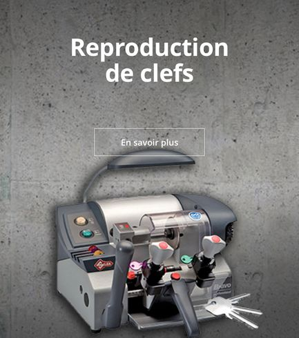 Reproduction clés